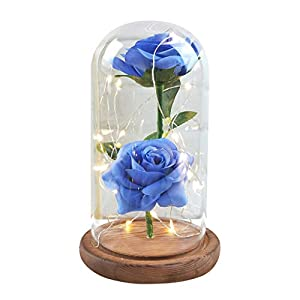 Handmade Preserved Never Withered Real Rose Flower Real Fallen Petals, in Luxury Glass Dome Gift Lover, Valentine's Day, Anniversary, Birthday, Wedding - Inspired Beauty The Beast 35
