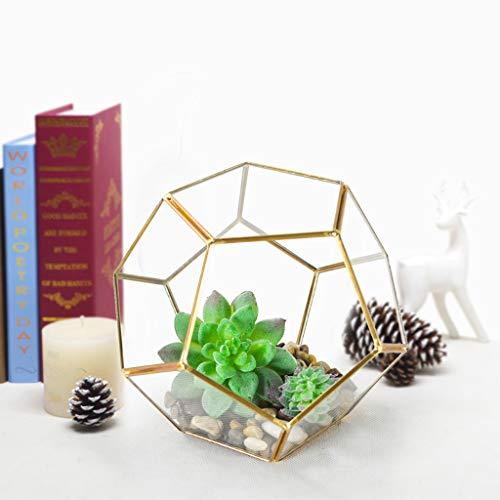 Gotian Geometric Fleshy Glass Flower House Crafts Greenhouse Flower Pot, Micro Landscape Glass, Suitable for Planting Miniature Vegetables, Succulents, Air Plants, Moss, Cactus