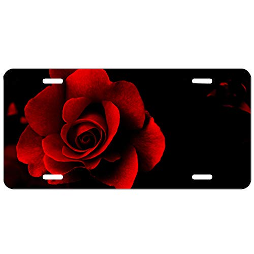 - XUN License Plate Red Flower Spring Creative Tin Painting Retro Wall Decoration Home Bar Parlor Room Wall Black Art Car Accessories Frame 12