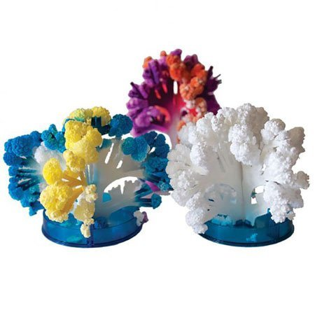 - Copernicus Toys Crystal Growing Coral Reef - Science Kit