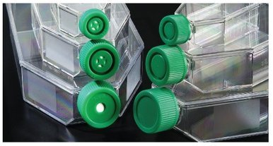 T-75 Cell Culture Flasks, Tissue Culture treated, vented cap, canted neck, 100/CS