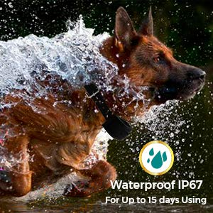 Buy big dog bark collar rechargeable