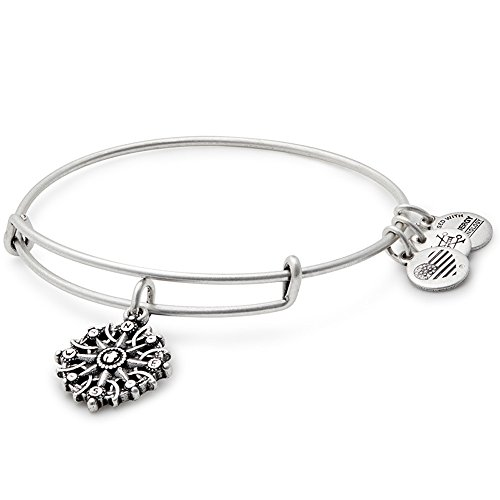 Alex Ani Compass Bangle Silver