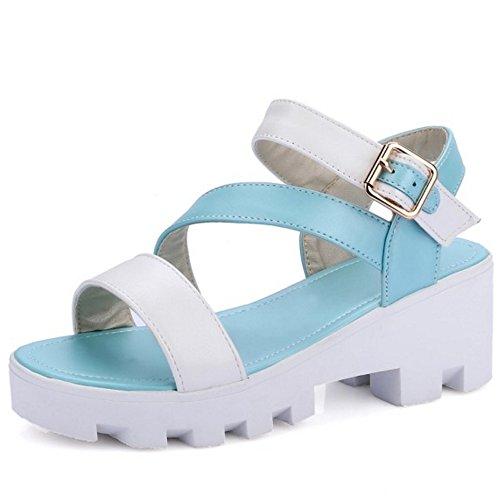 LongFengMa Women Casual Bukle Ankle Strap Platform Mid Heel Sandals Shoes Blue