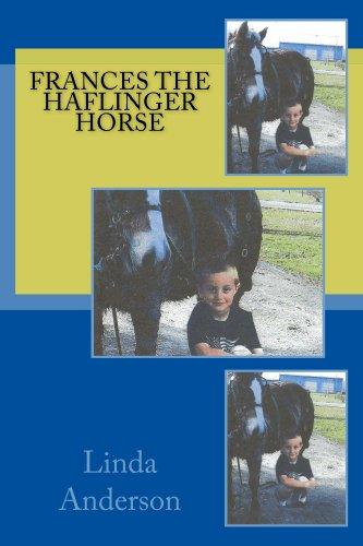 Frances the Haflinger Horse (Haflinger Horse Horses)