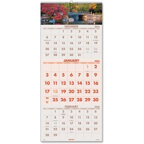(DMW50328 At-A-Glance Scenic 3-Months Per Page Panoramic Wall Calendar - Quarterly - 12.25