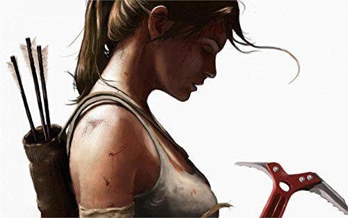 Prague Courtney 24X36 InchGame Tomb Raider Lara Croft Profile Girl Ponytail Shirt Arrows White - Pony Shirt Sweet