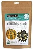 Wilderness Poets Oregon Grown Pumpkin Seeds - Organic & Raw (8 Ounce - Half Pound)