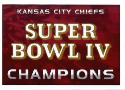 super bowl champs 2015 - 6