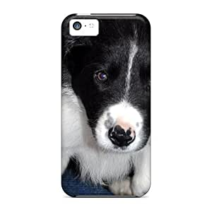 Hot Fashion GVC34635wlFb Design Cases Covers For Iphone 5c Protective Cases (border Collie Pup)