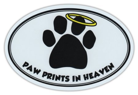 Oval Car Sticker - Paw Prints In Heaven - Dog/Pet Memorial - Bumper Sticker Decal (Memorial Pet Breed)