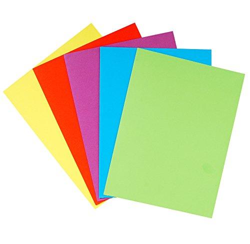 EXACOMPTA Pack of 10 Packs of 25 Presentation Folders BAHIA 220 g Assorted Colours