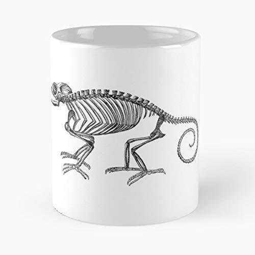 Vintage Chameleon Lizard Skeleton Gift Coffee/tea Ceramic Mug 11 Oz
