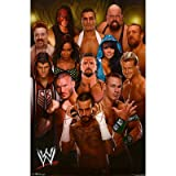 WWE Group 2012 Wrestling Poster
