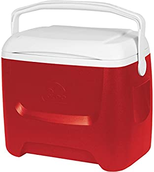 Igloo 28-Quart Island Breeze Cooler