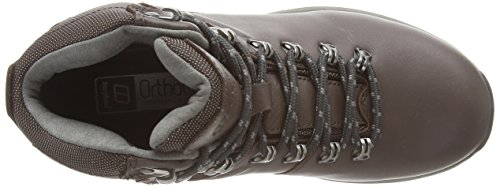 Dark Boot Ridge Women's GTX Brown Explorer Gull V38 Plus Brown Berghaus Grey q8BwA4x