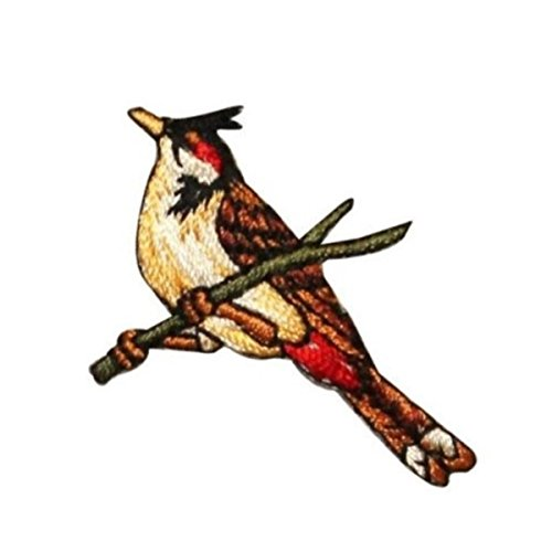 (ID 0612A Robin Perched Patch Cardinal Robin Branch Embroidered Iron On Applique)