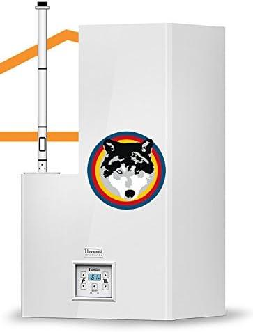 Caldera combinada condensación calentador Therm 24kdcn techo pasaventanas Vertical 1,50metros
