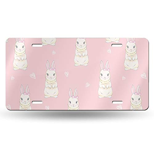 WGCXX Cute Cartoon Bunny Baby (2) Customized Personalized Metal License Plate, License Plate Metal Signage Car Decoration 6 Inches X 12 Inches,Customizable Signature