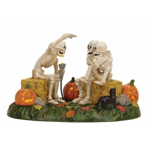 Department 56 Village Halloween Scary Skeleton Stories Accessory Figurine