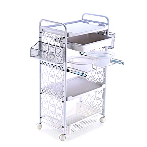 ADASP Beauty Salon Trolley, Salon Trolley, Rolling Utility Cart with Wheels Hairdresser Trolley Steel SPA Furniture Hair Styling Station Coloring Storage Cart – For Salon Clinics Medical Spa