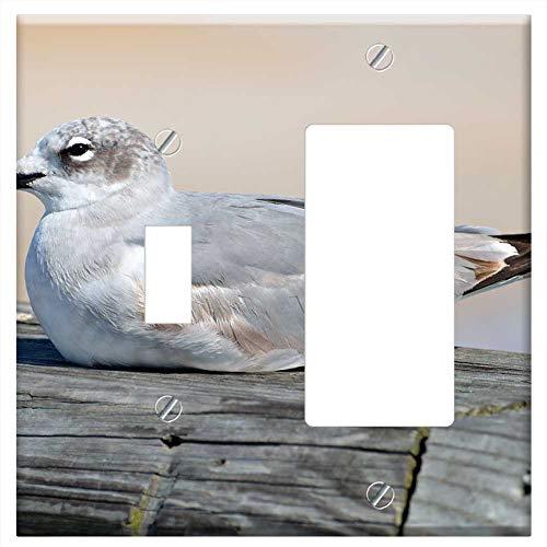 1-Toggle 1-Rocker/GFCI Combination Wall Plate Cover - Seagull Bird Resting Pier Sea Animal Gull Nat (Bird One Pier Plates)