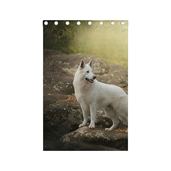 White Swiss Shepherd Dog Looking Back Blackout Curtain Top Insulation Compartment Bedroom Living Room Children's Room 55W x 84L Inches, 2 Panels 4