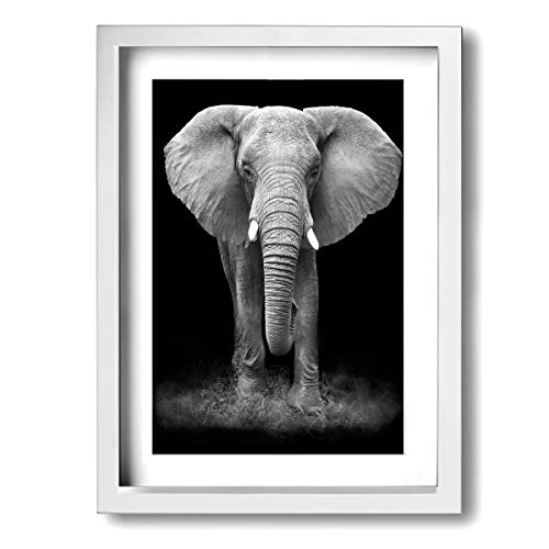 Black And White Glass Splashback Elephant Modern Wall Art Canvas Framed Paintings Home Decor Wall Pictures Ready To Hang 12X16
