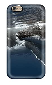ChrisArnold Scratch-free Phone Cases For Iphone 6- Retail Packaging - Blue Whale
