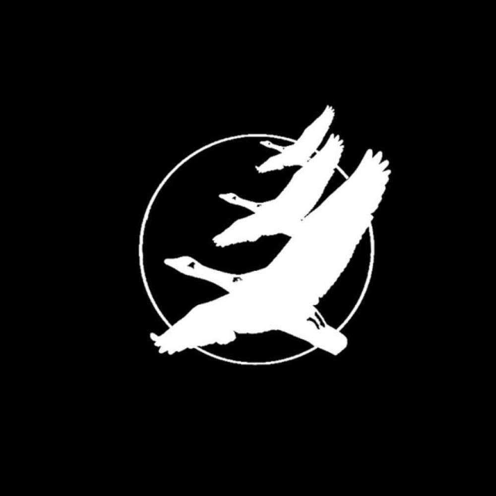 Auto Autoaufkleber Abziehbild Gänse Fliegen Mond Vogel Wildlife Fashion Auto Aufkleber Dekoration Aufkleber Vinyl 15 Cm 15 5 Cm 2 Stück Baumarkt