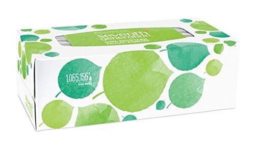 Seventh Generation Facial Tissue, 2-Ply Sheets, 175-Count Boxes (Pack of 36) by Seventh Generation (Image #1)