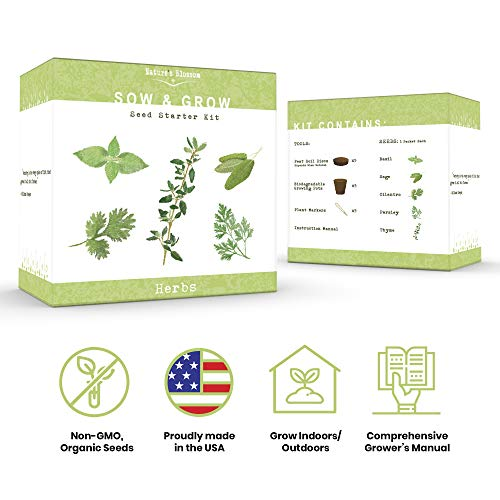 Nature Blossom Herb Garden Kit 5 Herbs To Grow From Seed Basil Cilantro Sage Parsley and Thyme Seeds