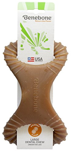 Benebone Dental Dog Chew Toy for Aggressive Chewers, Long Lasting, Made in USA, Large, Real Peanut Flavor by Benebone