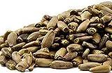 Sow No GMO Milk Thistle Non GMO Heirloom Therapeutic Garden Herb 100 Seeds