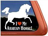 I Love My Arabian Horse Vinyl Window Decal