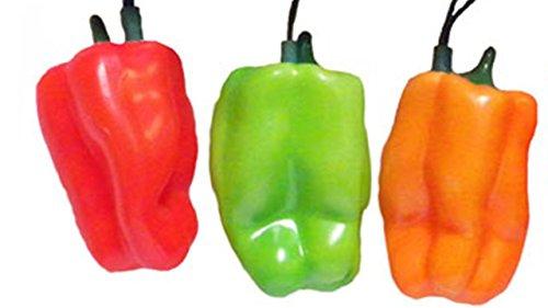 Hot Pepper Patio Lights