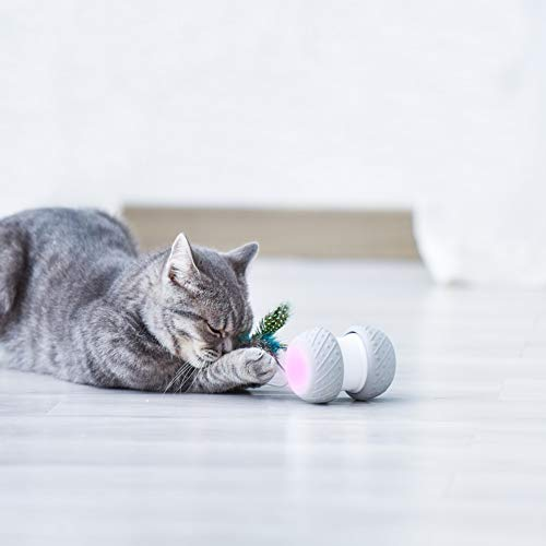 Cat Interactive Toy-Smart Interactive Cat Feather Toys Upgraded USB Charging 360 Degree Self Rotating Automatic LED Light Ball Toy for Pet Entertainment Hunting Exercise-Battery Included 7