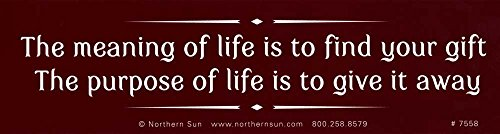 Northern Sun The Meaning Of Life Is To Find Your Gift, The Purpose Of Life Is To Give It Away - Magnetic Bumper Sticker/Decal Magnet (11.25