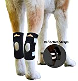NeoAlly Dog Ankle Braces Small Canine Rear Leg Hock Support with Safety Reflective Straps for Hind Leg Wounds Heal and Injuries and Sprains from Arthritis (Pair)
