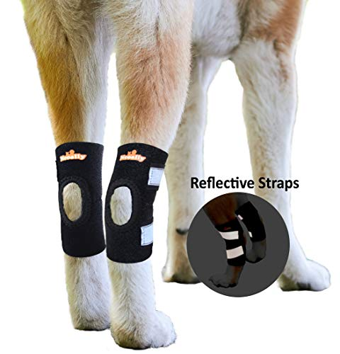 (NeoAlly Large Dog Braces Canine Rear Leg Hock Support with Safety Reflective Straps for Hind Leg Wounds Heal and Injuries and Sprains from Arthritis (Pair))