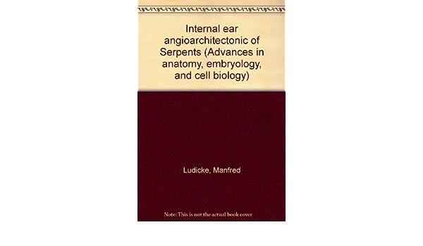 Translation of «internal ear» into 25 languages