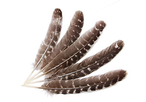 wanjin Natural Turkey Feathers 9-12 inches Party DIY Decoration per Pack of 10]()