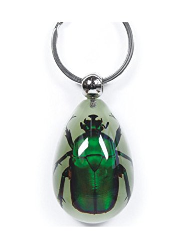 WeGlow International WGI Real Emerald Rose Chafer Glow in The Dark Keychain