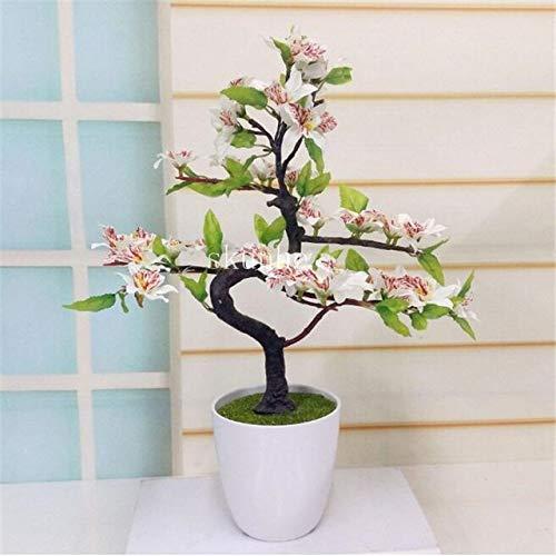 Japanese Sakura Bonsai,Bonsai Flower Cherry Blossoms for Home & Garden 3pcs: 4 ()