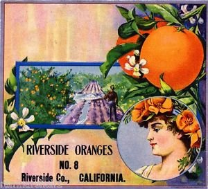 Buy riverside california magnet
