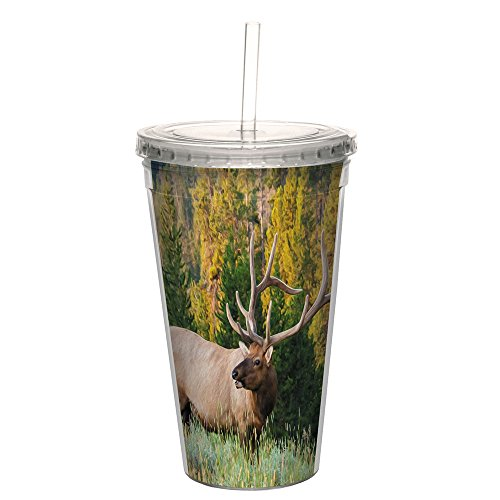 Tree-Free Greetings CC98729 Cool Cups, Double-Walled PBA Free with Straw and Lid Travel Insulated Tumbler 16 Ounces Elk