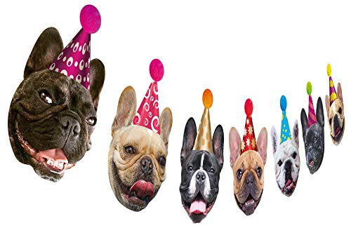 Bulldog Birthday (Dog Birthday Garland, Funny French Bulldog Face Portrait Birthday Banner, Bday Bunting Decoration)