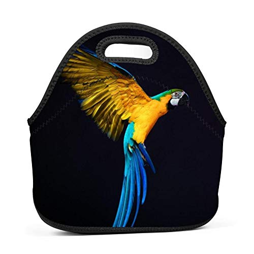 gxcvsddgtrhgdq Rainbow Parrot 3D Printed Reusable Lunch for sale  Delivered anywhere in USA