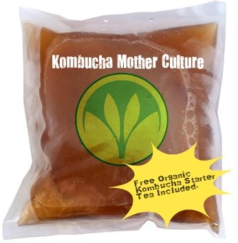 "getkombucha, Kombucha Starter KIT, Make Raw Organic Kombucha Tea Starter Kit 2 ""The tea starter kit was packaged great and the easy instructions gave us a wonderful tea. We are already on our second batch."" (5 Stars) Janice Smith, Amazon Customer Review"