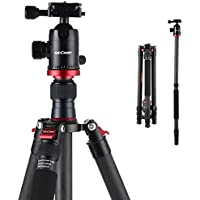 K&F Concept 65.5 Inch Carbon Fiber Tripod 4 Sections Lightweight Complete Monopod with Ball Head for Digital DSLR SLR Camera